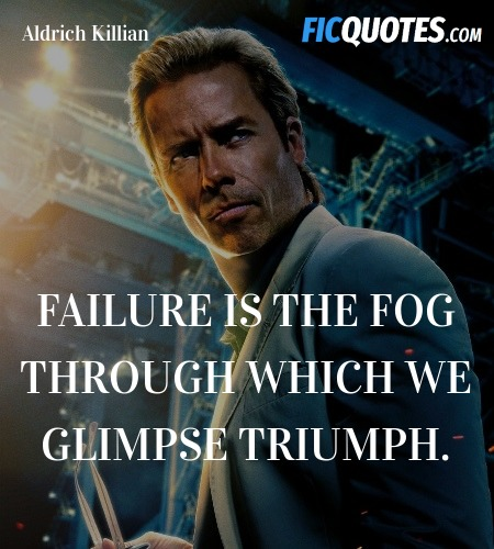 Failure is the fog through which we glimpse triumph. image