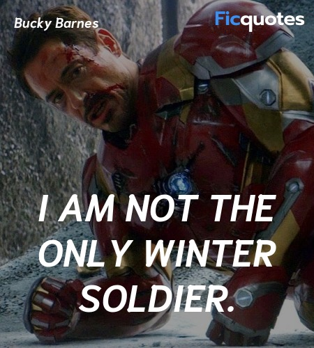 I am not the only Winter Soldier. image