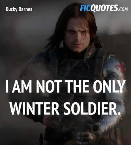 I am not the only Winter Soldier quote image