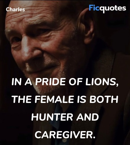 In a pride of lions, the female is both hunter and... quote image