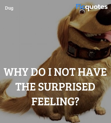 Why do I not have the surprised feeling quote image