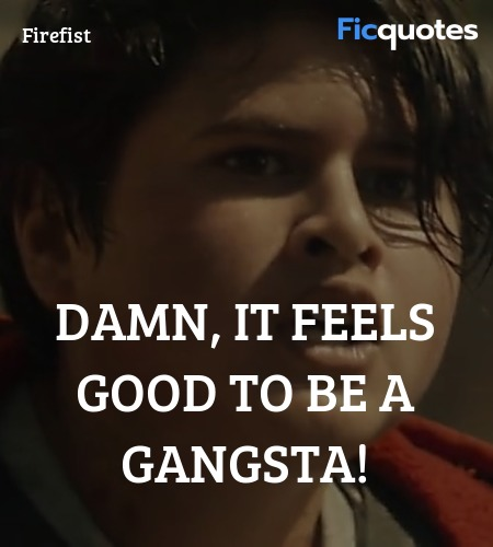 Damn, it feels good to be a gangsta quote image