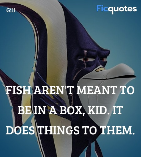 Fish aren't meant to be in a box, kid. It does ... quote image