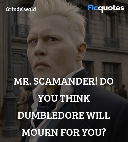 Mr. Scamander! Do you think Dumbledore will mourn for you? image