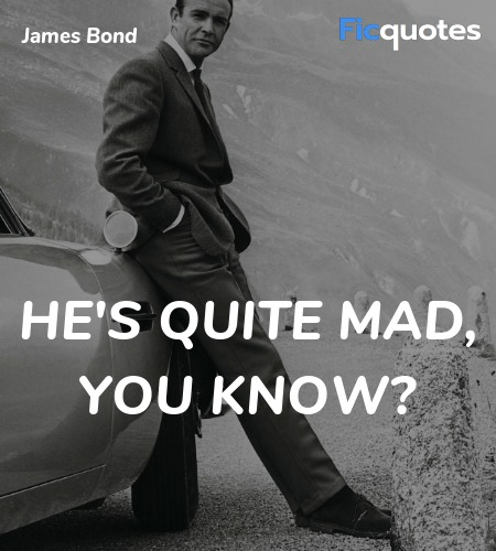 He's quite mad, you know quote image