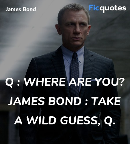 Take a wild guess, Q quote image