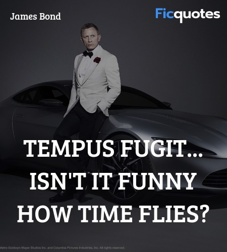 Tempus Fugit... isn't it funny how time flies? image
