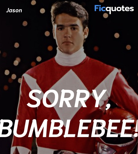 Sorry, Bumblebee quote image