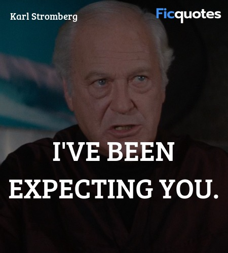 I've been expecting you quote image