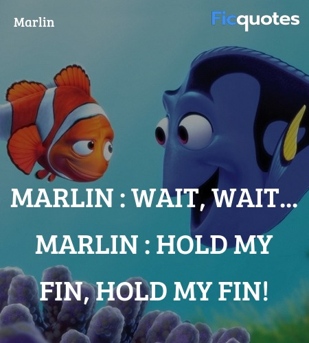 Hold my fin, hold my fin quote image