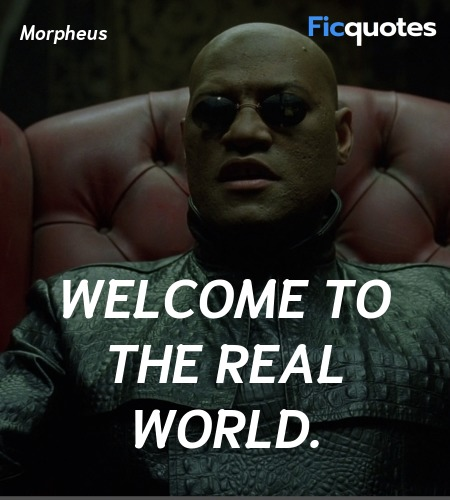 Welcome to the real world quote image