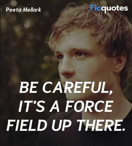 Be careful, it's a force field up there quote image