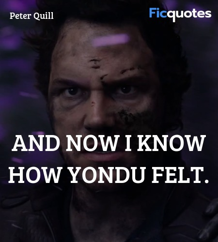 And now I know how Yondu felt quote image