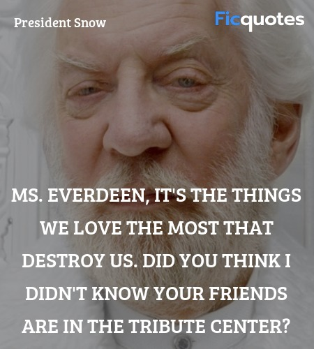 Ms. Everdeen, it's the things we love the most ... quote image