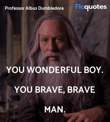 You wonderful boy. You brave, brave man quote image