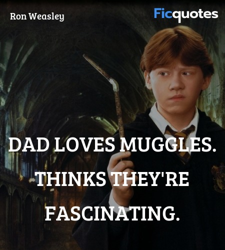Dad loves muggles. Thinks they're fascinating... quote image