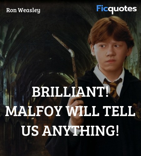 Brilliant! Malfoy will tell us anything quote image