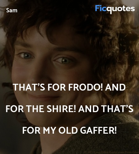 That's for Frodo! And for the Shire! And that's for my old Gaffer! image