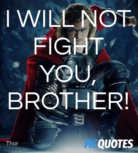 I will not fight you, brother quote image