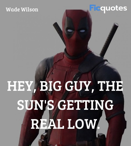 Hey, big guy, the sun's getting real low. image
